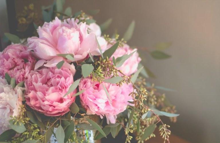 Pink peonys